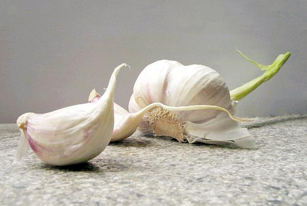 """Cebule czosnku pospolitego (""""ząbki"""") fot. Pedros-Wikimedia"""