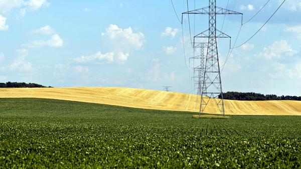 fot. Tannen Maury/PAP/EPA
