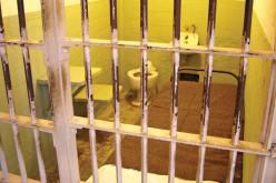 Sondaż: większość chce przywrócenia b. więźniom prawa do głosowania