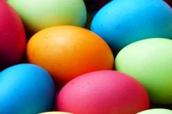 Jego doskonałość kurze jajo
