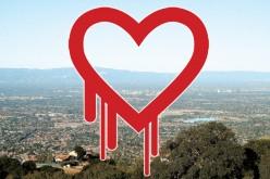 Wirus Heartbleed na usługach NSA