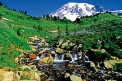 Turystki z Chicago odnalezione w Oregonie