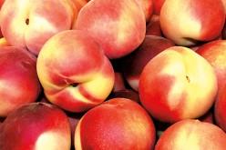 Uwaga! Świeże owoce źródłem groźnej listeriozy