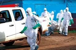 WHO: Jeśli wirus Ebola będzie się rozprzestrzeniać, grozi to katastrofą