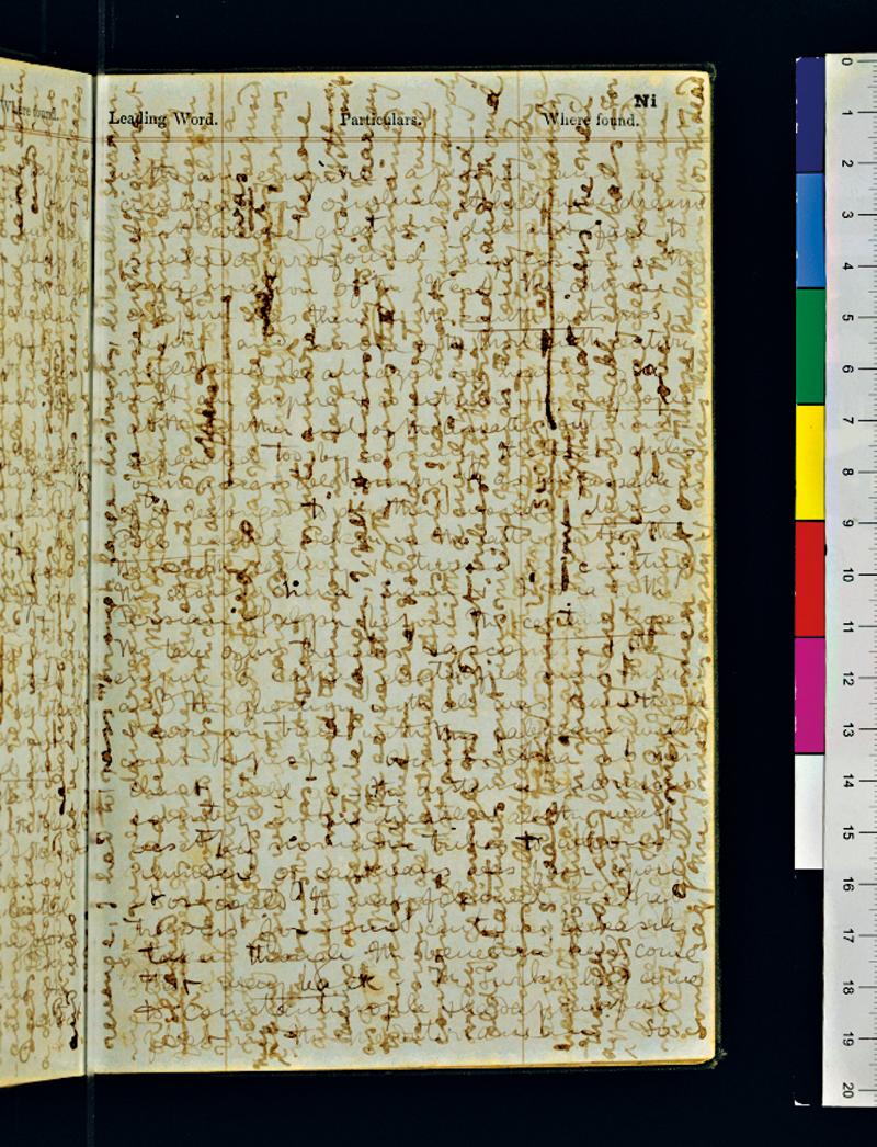 Strona z dziennika Livingstona fot.David Livingstone Centre/livingstoneonline.wordpress.com