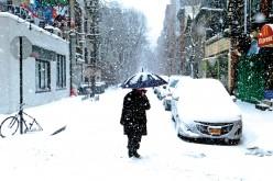 ZDROWIE. Gdy na dworze mróz i śnieg. Propolis na łysienie