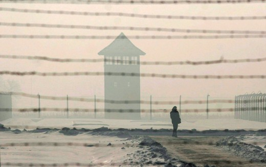 Auschwitz-Birkenau: 164924, 153156