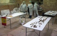 Continues the search for Miguel de Cervantes' human remains