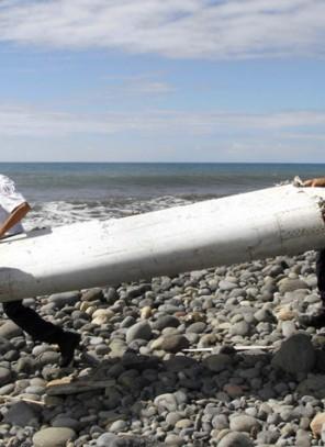Szczątki samolotu odnalezione na Reunion dotarły do Paryża