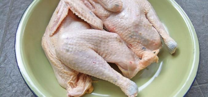 Salmonella w kurczakach. Chicagowski producent wycofuje produkty