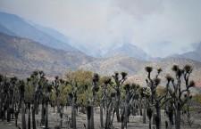 Erskine Wildfire near Lake Isabella