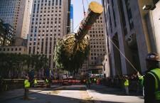 Christmas Tree Arrives to Rockefeller Center