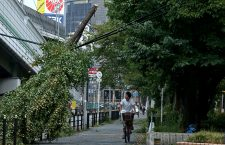 Powerful typhoon Jebi makes landfall in western Japan, Osaka - 04 Sep 2018