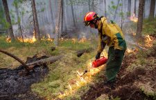 Wildfires in Siberia, -, Russian Federation - 01 Aug 2019